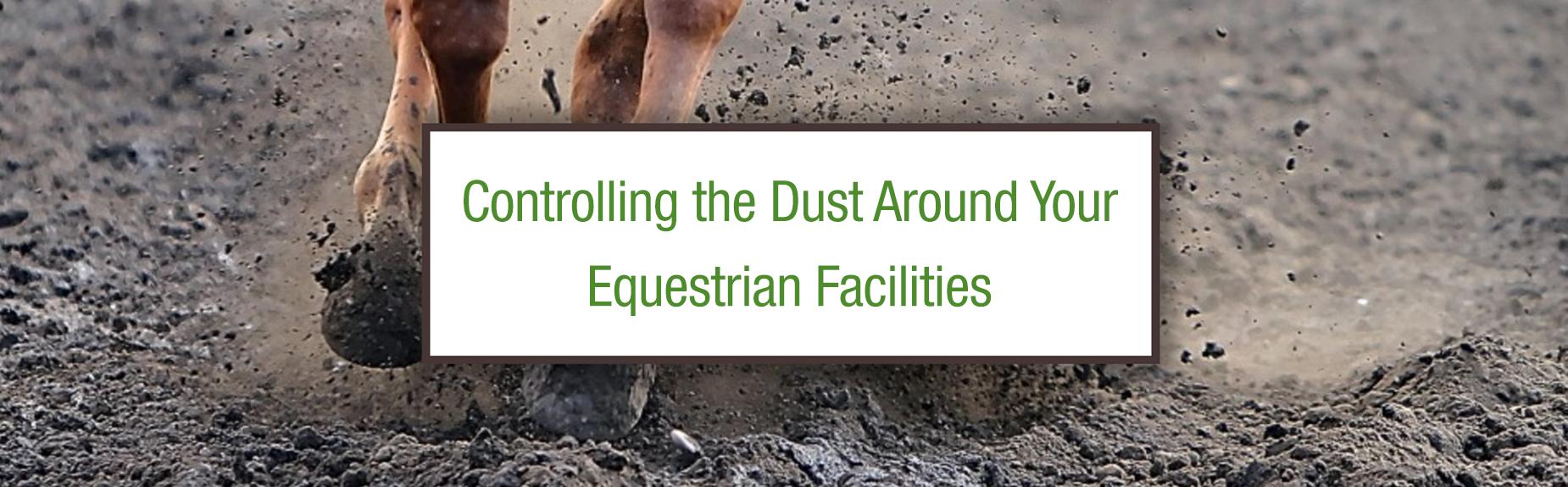 equestrian dust