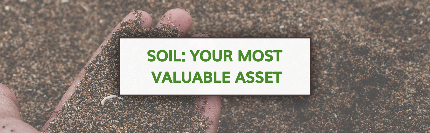 Our Most Valuable Resource is the SOIL